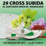subida15(1)